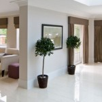 Beautiful open living areas plasterboard and cornice installation Dee Why Sydney